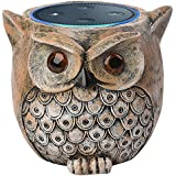 PAIYULE Speaker Stand Case Compatible Amazon Echo Dot (2nd 1st Generation). Alexa Echo Dots Owl Statue Crafted Guard Station(Brown)