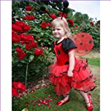 Ladybird Fantastic Fairies Fancy Dress Costume 3 to 5 years