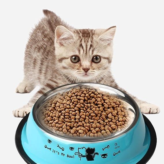Zhiye - Cuencos de Acero Inoxidable para Gatos, 2 Piezas, Antideslizante, Cuenco de alimentación para Gatos con Bonito patrón de Gatos Pintado para Perros y ...