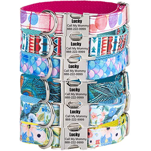HiPeep Dog Collar Personalized, Custom Engraved ID Collars with Name Phone Number Address for Pet(XS, S, M, L, XL)