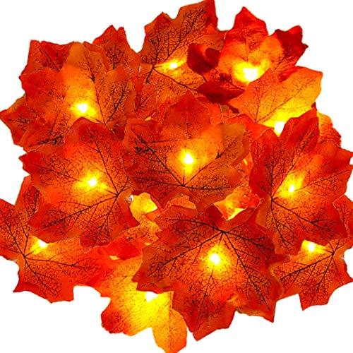 Hojas de otoño, Ainkedin guirnalda otoño, 30 luces led decoracion, Luces decoracion halloween, Adornos navidad, Guirnaldas decoracion pared plantas artificiales decoracion Escalera decorativa
