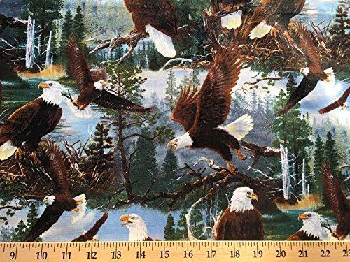Eagle Valance - 1