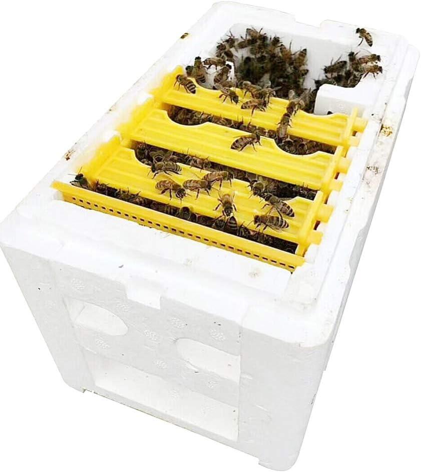 Yanhonin Colmena Caja Cosecha Colmena Polinización Apicultura para Apicultura De Abejas Apicultura