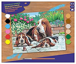 KSG Basset Hounds Paint-By-Number