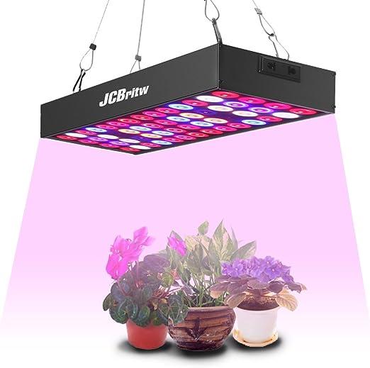 """Idroponica 450w CFL Spettro Blu /""""crescita/"""" Lampadina con supporto CFL-verdure incrementare"""