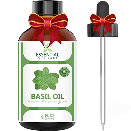 Basil Essential Oil for Gout