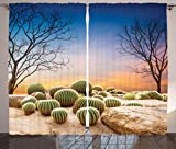Cactus Decor Curtains by Ambesonne, Cactus Balls with Spikes on a Montain Desert Sand Mexican Landscape Photo, Living Room Bedroom Window Drapes 2 Panel Set, 108 W X 63 L Inches, Multicolor