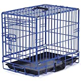 ProSelect Crate Appeal Fashion Color Dog Crates for Dogs and Pets Review