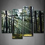 Sunshine Through Forest Wall Art Painting Pictures Print On Canvas Landscape The Picture