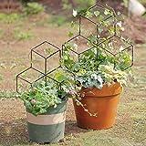 Mr Garden Lattice-Shaped Trellis Mini Trellis Garden Trellis for Potted Climbing Plants Support, 17.7'' H, Black