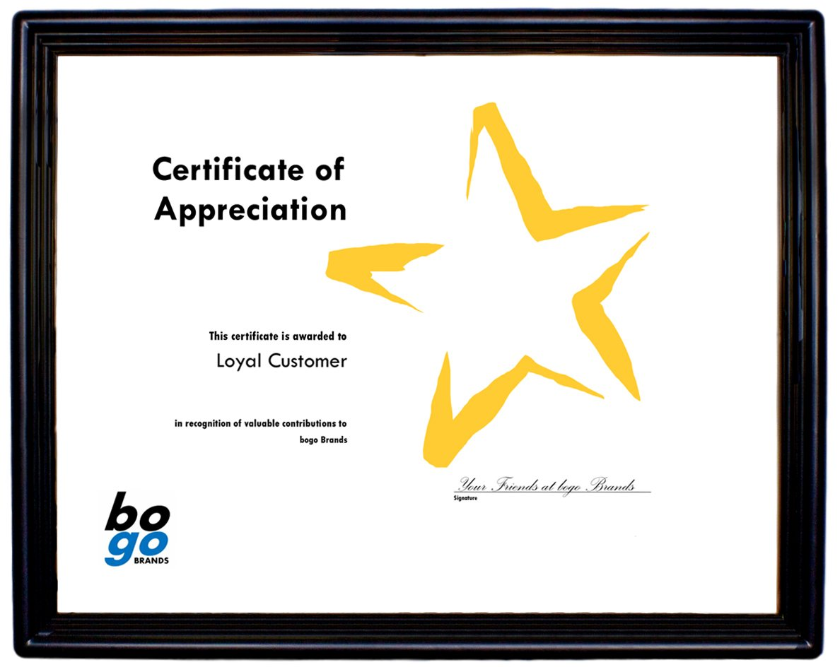 8.5 x 11 Inch Plastic Document Frame with Plastic Face - Economy Frames by bogo Brands (100)