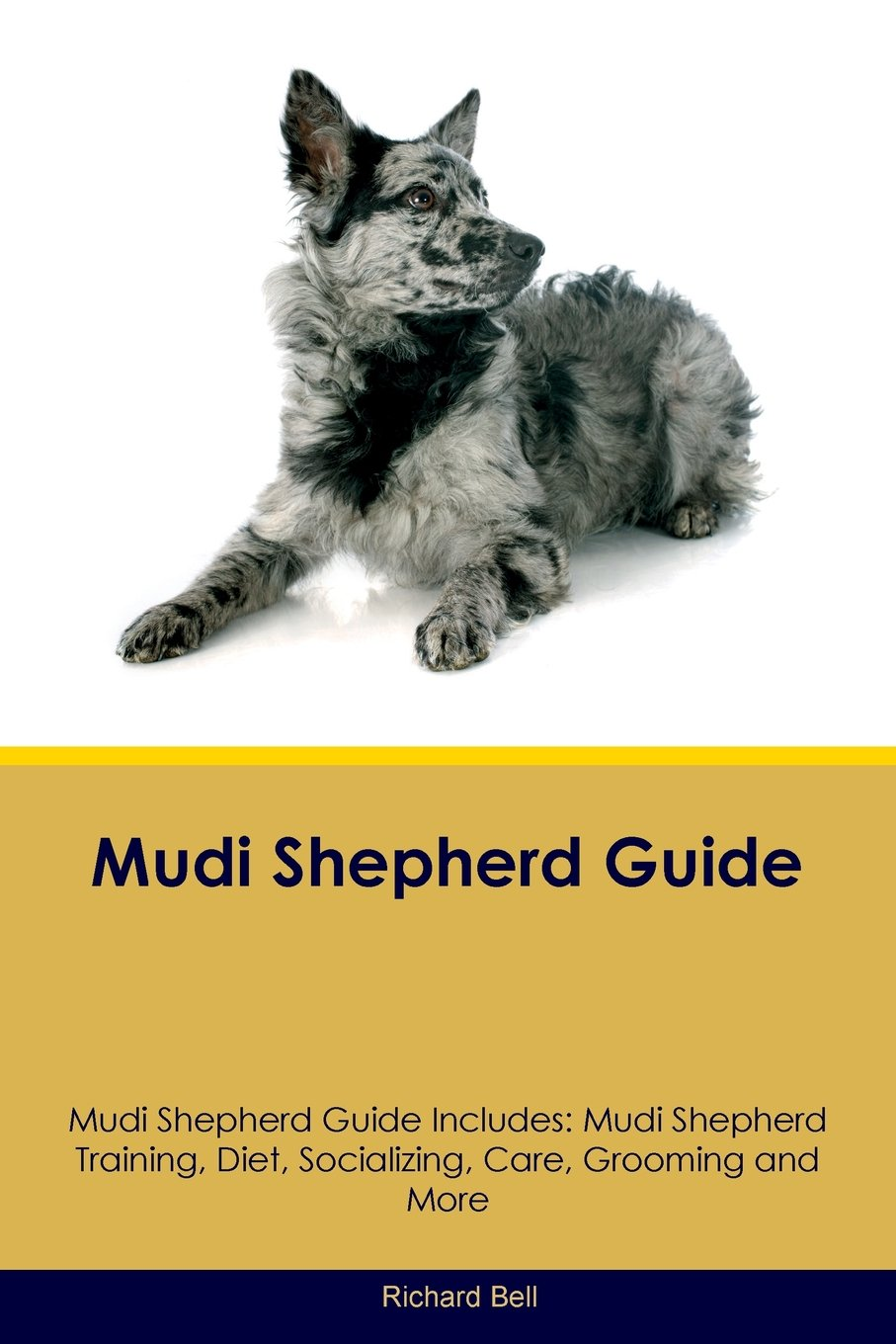 The Complete Guide to Mudi