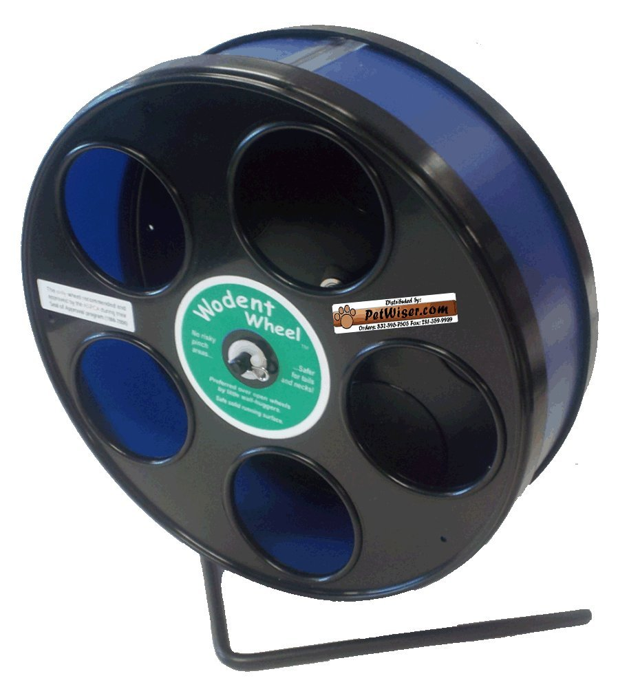 Rodent - Semi-Enclosed Exercise Wodent Wheel 'Junior' 8'' Choose Color (Blue)