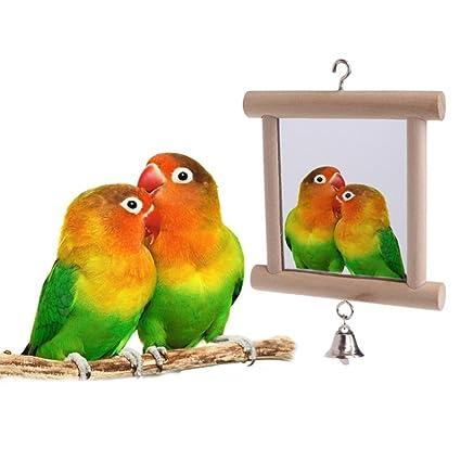 Jaula Sotoboo PájarosJuguetes Para LoroJuguete Pájaros 0O8knwP