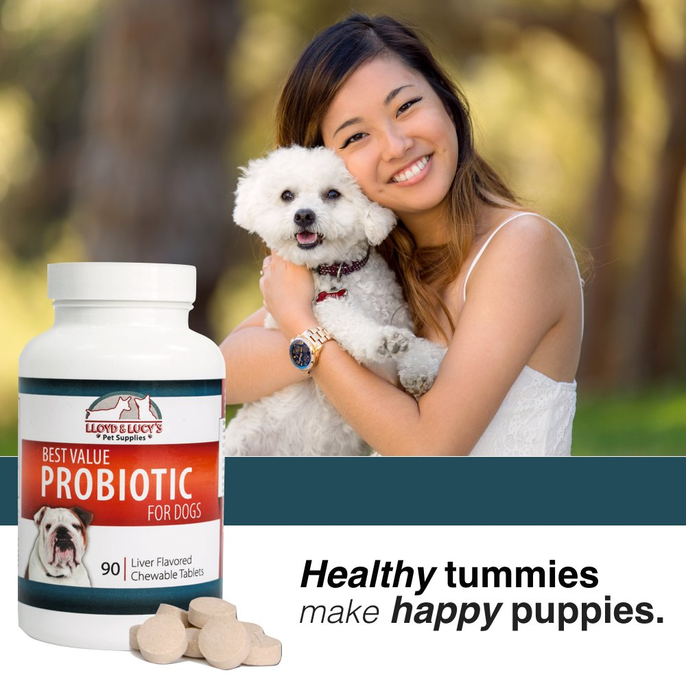 Best Value Probiotic for Dogs, 90 chewable Tablets, 7 Beneficial Strains, 4 Billion CFUs per Tablet, Acidophilus probiotics for Digestion and Immune Support by Lloyd and Lucy's Pet Supplies (Image #4)