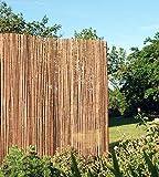 MGP Bamboo Slat Fence