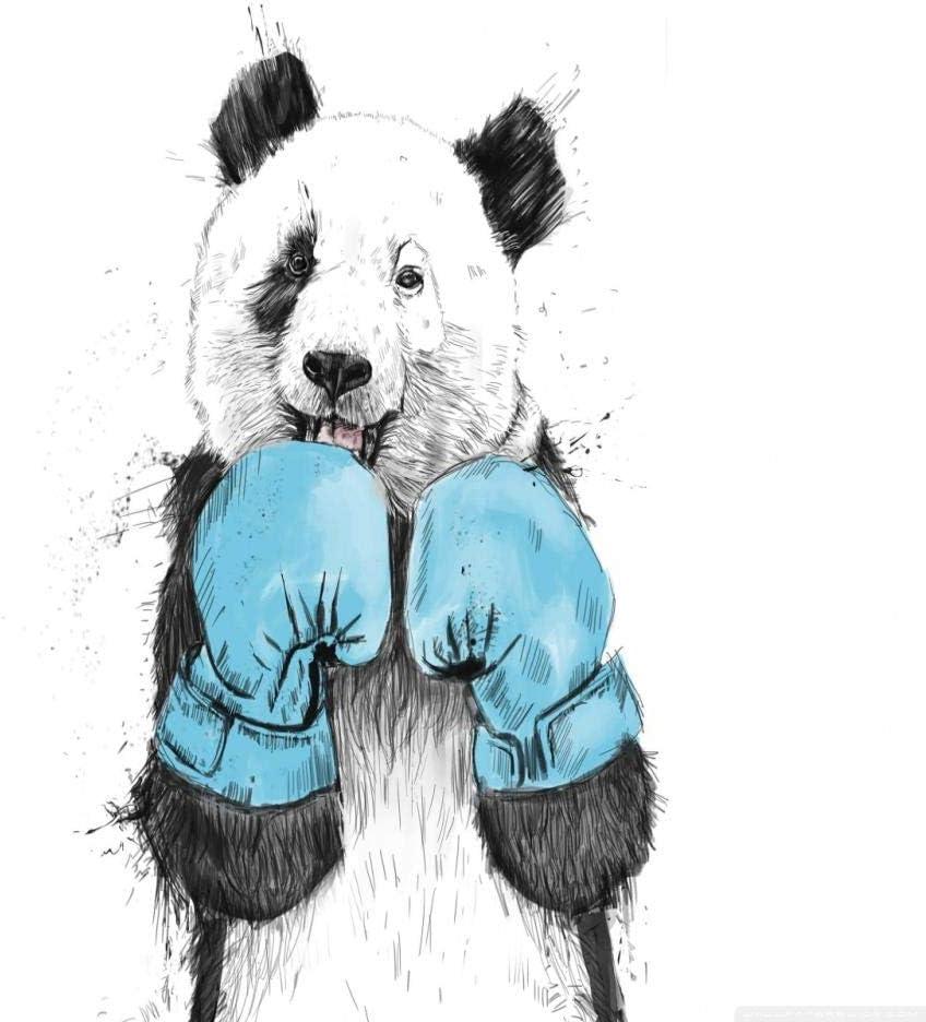 Guantes De Boxeo Panda Diy Pintura Al Oleo Digital Por Numeros