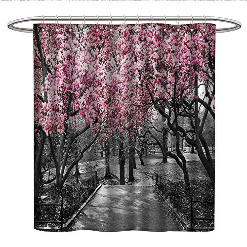 - Anshesix NYC Decor Collectionlong Shower curtainBlossoms in Central Park Cherry Bloom Trees Forest Spring Springtime Landscape PictureShower Curtain liningPink Gray