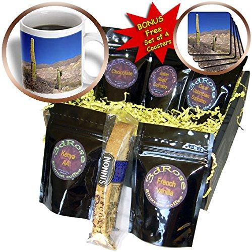 Danita Delimont - Cactus - Argentina, Salta, Cardones NP. Cardon is a specie of cactus. - Coffee Gift Baskets - Coffee Gift Basket (cgb_207710_1)