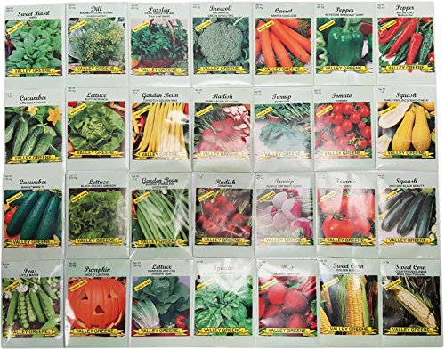 28 Packs Variety Deluxe Vegetable Seeds Create a Deluxe Garden! All Seeds are Heirloom, 100% Non-GMO! by Black Duck Brand
