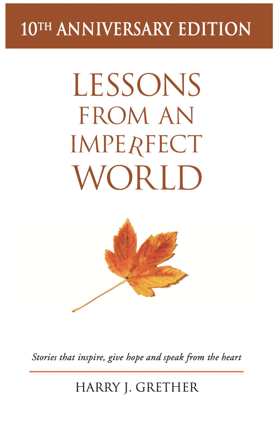 Lessons From an Imperfect World (10th Anniversary Edition) PDF
