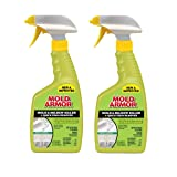 Home Armor FG502 Instant Mold and Mildew Stain