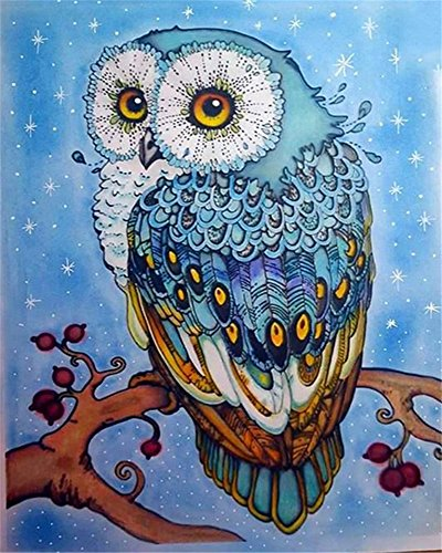 Gate Paint By Number - DIY Oil Painting Paint by Number Kit for Kids Adults Beginner 16x20 inch -Cute Owl,Drawing with Brushes Christmas Decor Decorations Gifts (Frame)