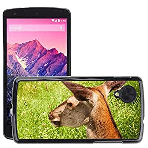 Hot Style Cell Phone PC Hard Case Cover // M00108649 Doe Summer Animal Green Grass // LG Nexus 5