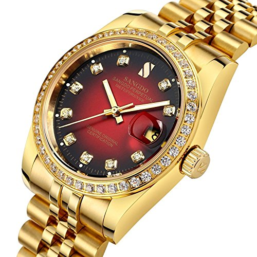 Mens Diamond Accented Bezel and Luminous Dial 18K Gold Plated Watch Waterproof Automatic Mechanical Watch (Gold (18k Solid Gold Mens Watch)