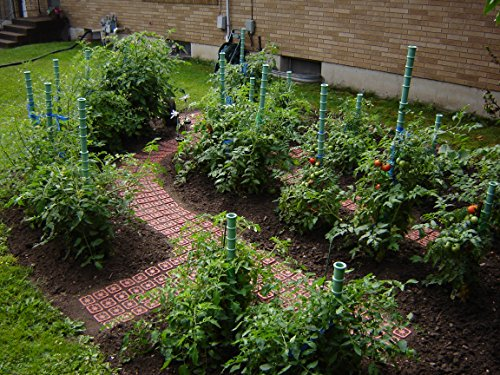 Garden Pavers - 4