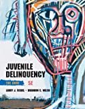 Juvenile Delinquency : The Core, Siegel, Larry J. and Welsh, Brandon C., 1285067606