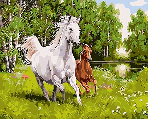 JynXos Wooden Framed Paint By Number Horses Linen Canvas DIY Painting - Running War Horse