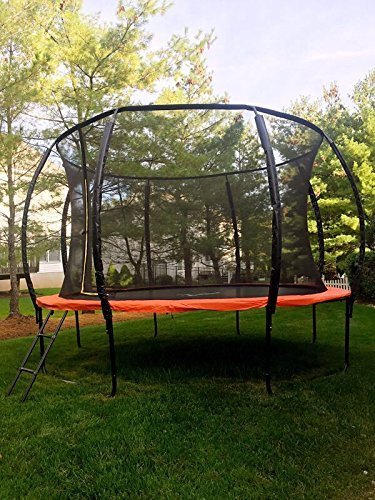 12 Feet Trampoline with Safety Enclosure Net and Ladder
