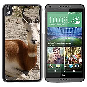 Hot Style Cell Phone PC Hard Case Cover // M00113975 Nature Animal Gazelle // HTC Desire 816