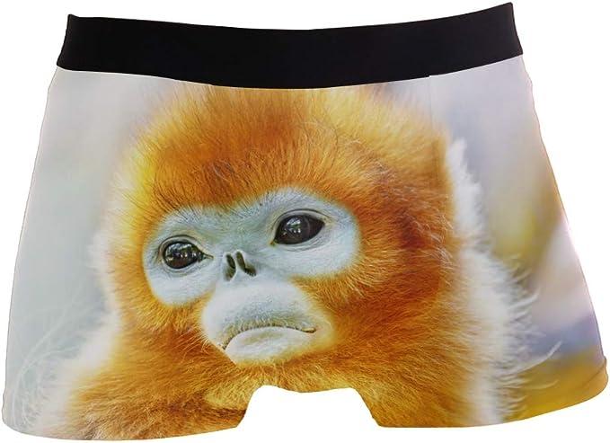 ZZKKO London Bus Mens Boxer Briefs Underwear Breathable Stretch Boxer Trunk with Pouch S-XL