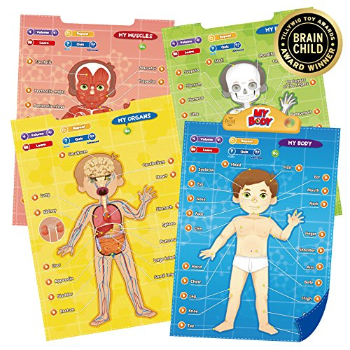 educational body parts - 1