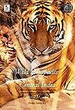 Wild Escapades around Central India