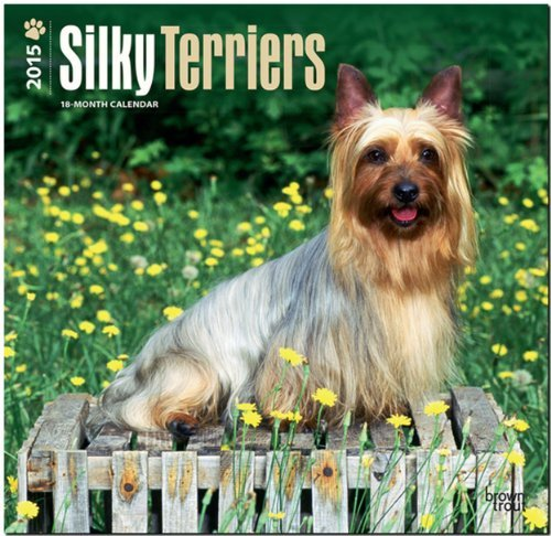 Download By BrownTrout Silky Terriers 2015 Square 12x12 (Wal) [Calendar] ebook