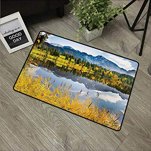 (Anzhutwelve Nature,Kitchen Floor mats Pastoral Countryside Scenery by The Lake with Reflections Alpine Meadow Picture W 31