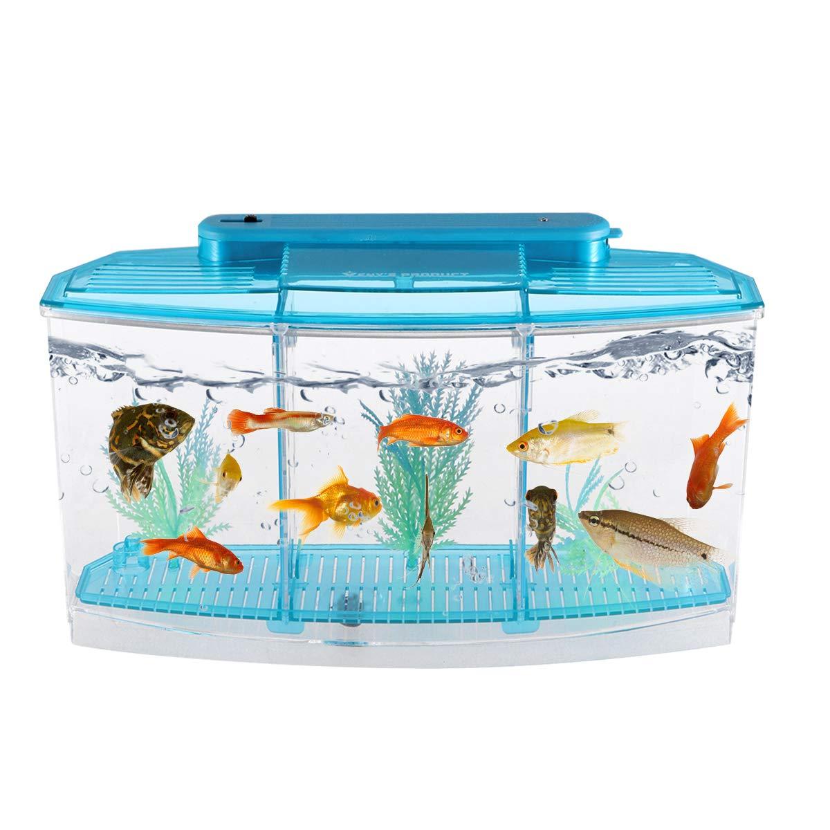 POPETPOP Mini Desktop Aquariums Fish Tank Ecological Goldfish Tank Hatchery Breeder Box for Living Office and Home dÃcor(Blue) by POPETPOP (Image #8)