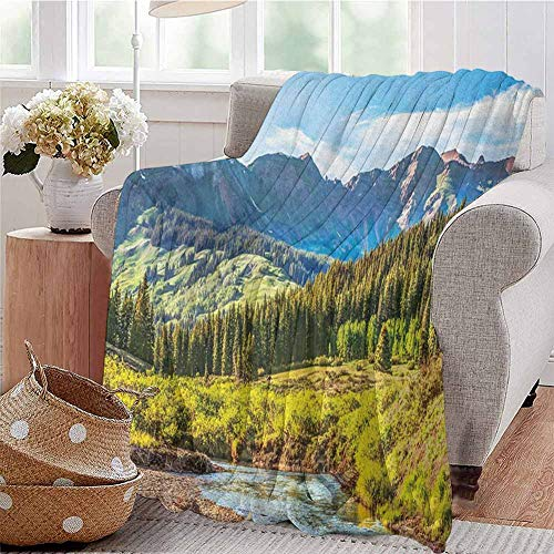 Landscape Luxury Special Grade Blanket Mountain Vista Thick Forest Trees Mountain Flowing River Grass Cloudy Sky Valley Multi-Purpose use for Sofas etc. W60 x L70 Inch Multicolor (Sofa Valley Vista)
