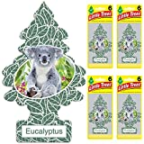 LITTLE TREES Car Air Freshener | Hanging Tree Provides Long Lasting Scent for Auto or Home | Eucalyptus, 6-Packs (4 count)