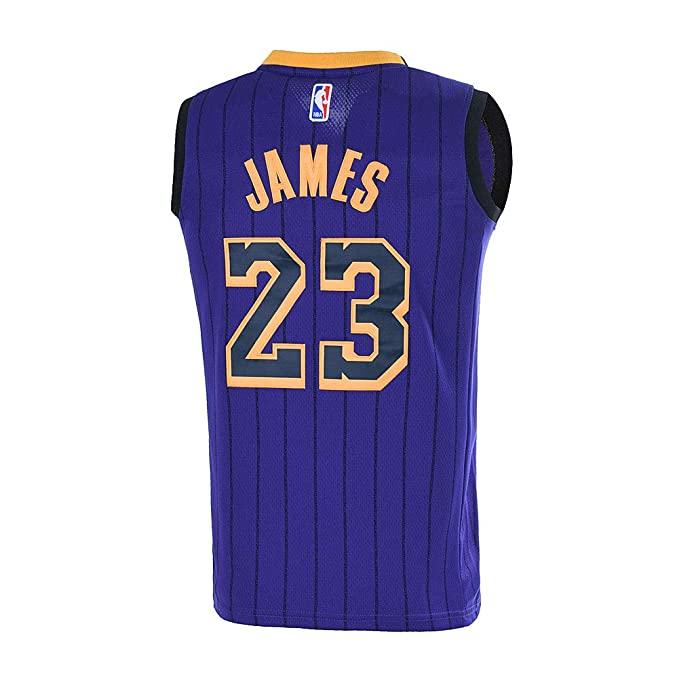 quality design ada66 de518 Outerstuff Youth 8-20 Los Angeles Lakers LeBron James Jersey for Kids Purple