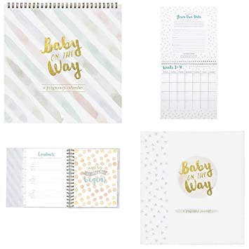 Pregnancy Journal Countdown Calendar Set Baby On The