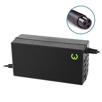 ISCEETER - Cargador para Patinete eléctrico (48 V, Fuente de ...