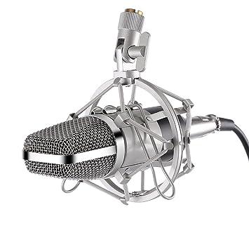 leshp radiodifusión grabación micrófono tarjeta de sonido ...