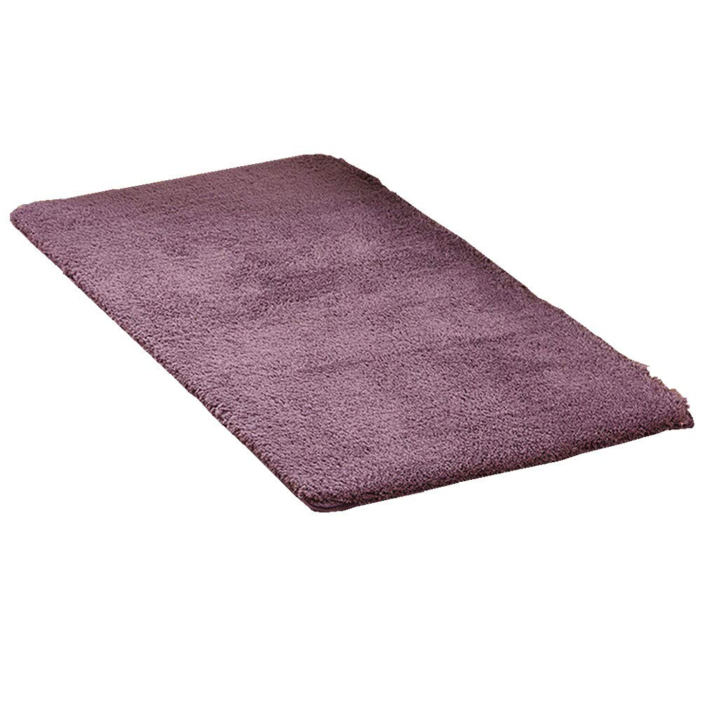 Mynse 23.6''x47.2'' Modern Simplicity Super Soft Plush Area Rugs for Bedroom Living Room Bedside Hotel Mat (Purple)