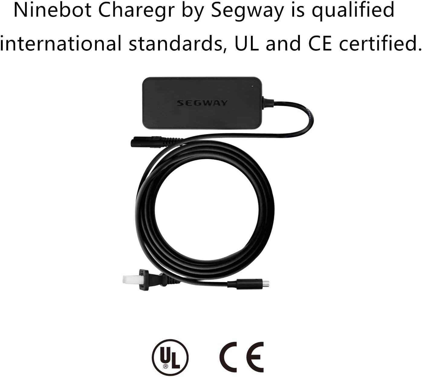 GENUINE OEM ORIGINAL Segway NINEBOT Chargeur ES1 ES2 ES4 Citron Vert Oiseau Scooter
