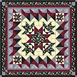 Quilt Kit Crown of Roses/Beautiful Deep Red, Black Gray QN