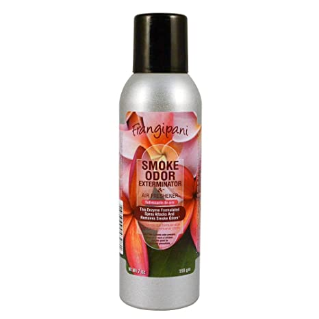 Amazon.com: Smoke Odor Exterminator, desodorante que elimina ...